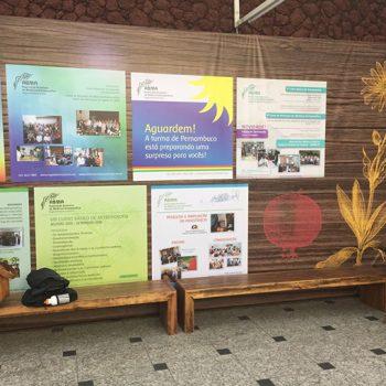 Congresso Brasileiro De Medicina Antroposofica 19